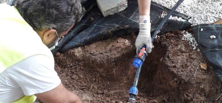 Trabajos de adecuación de jardines del Parque Almansa de San Javier